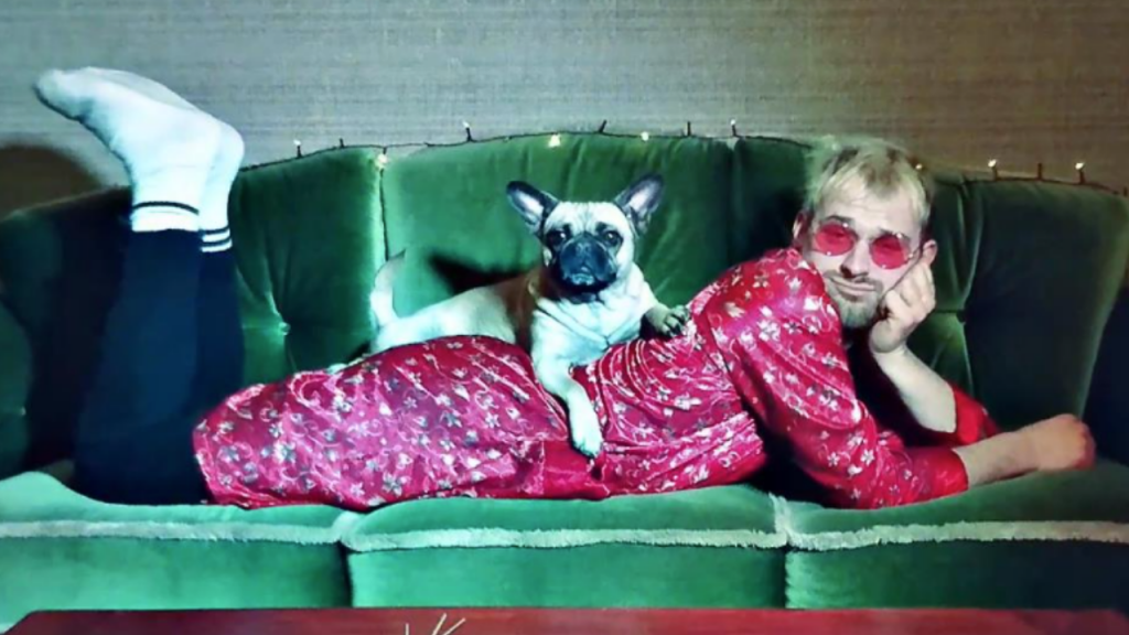 Stroppo Couch Pug Dog Hund